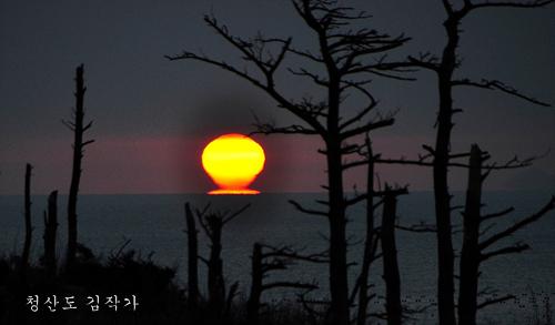 13목섬 오메가 일출명함.jpg